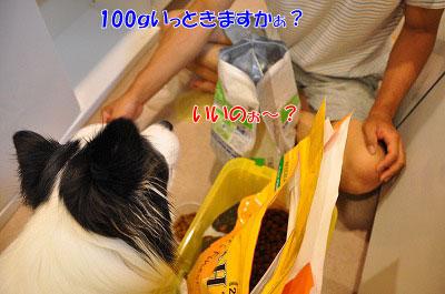 201107-mam01.jpg