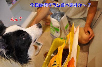 201107-mam02.jpg
