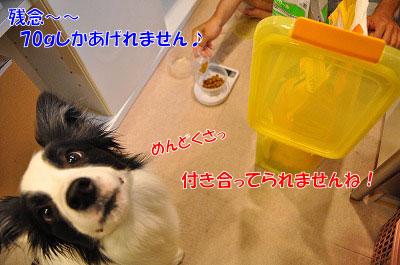 201107-mam03.jpg