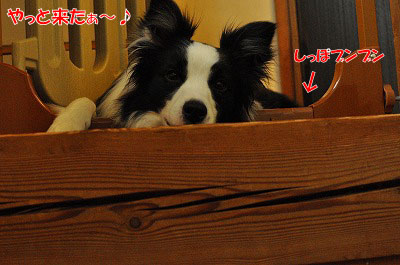 201107-mim03.jpg