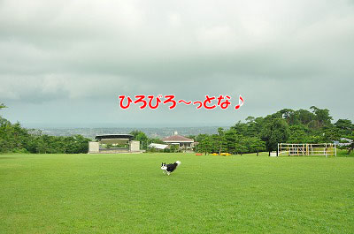 201107-miy01.jpg
