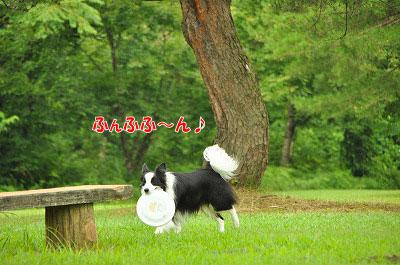 201107-miy05.jpg