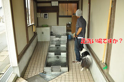 201107-syo03.jpg