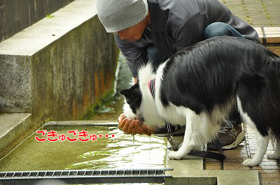 201107-syo07.jpg