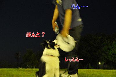 201107-ten06.jpg