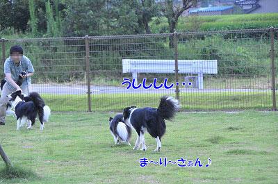 201108-bl03.jpg