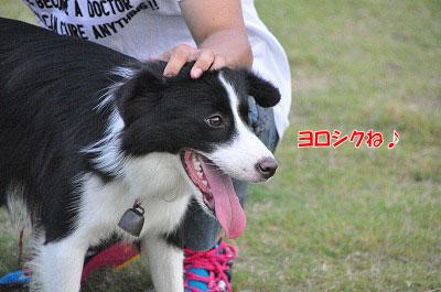 201108-oya04.jpg