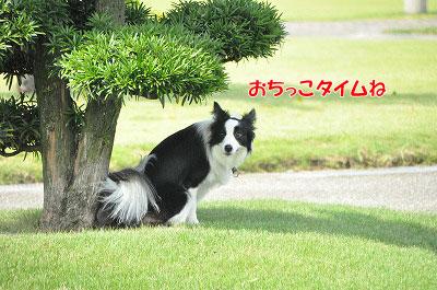 201108-uoz05.jpg