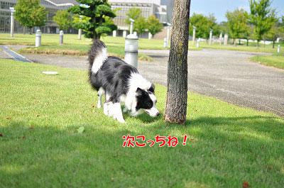 201108-uoz07.jpg
