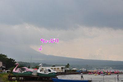 201108w-coh02.jpg