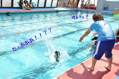 201108w-poo06.jpg