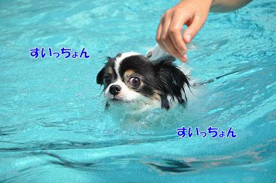 201108w-poo11.jpg