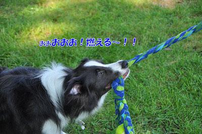 201108w-poo16.jpg