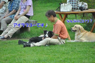 201108w-poo17.jpg