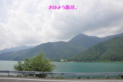 201108w-sai01.jpg