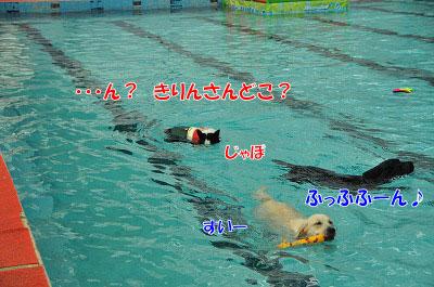 201108w-swi08.jpg