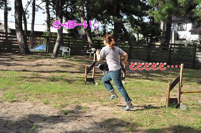 201109-kai01.jpg