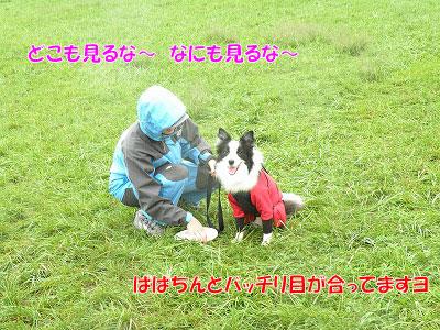 201109-sin01.jpg