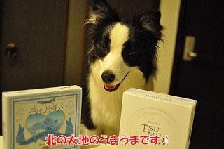 201109-whi01.jpg