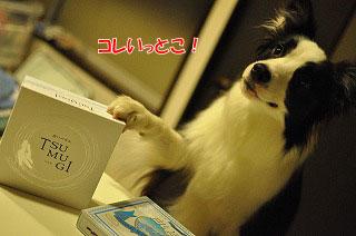 201109-whi02.jpg
