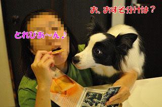 201109-whi08.jpg