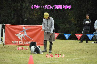 20111015-mam03.jpg