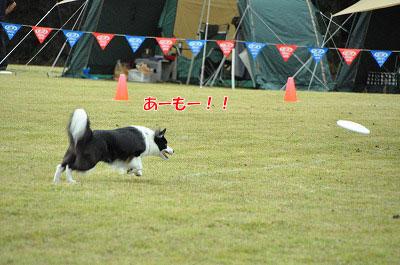 20111015-mam05.jpg