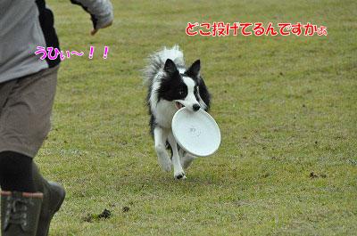 20111015-mam07.jpg