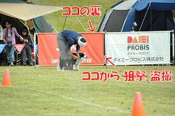 20111015-mam10.jpg