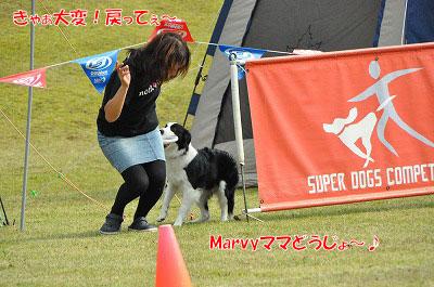 2011101516-jyu02.jpg