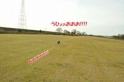 20111128-kaw03.jpg