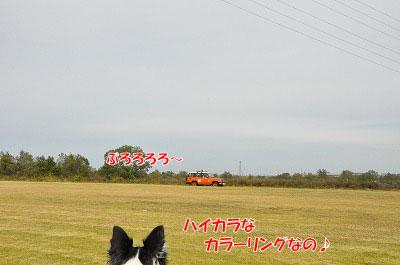 20111128-kaw05.jpg