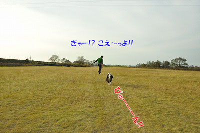 20111128-kaw09.jpg