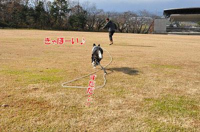20111211-miy01.jpg