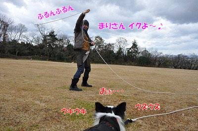 20111212-miy02.jpg