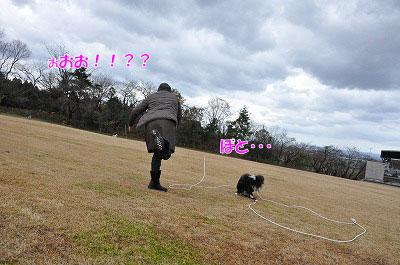 20111212-miy04.jpg