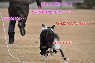 20111212-miy05.jpg