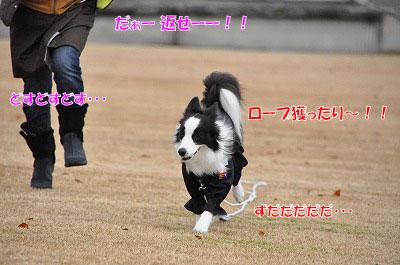 20111212-miy06.jpg