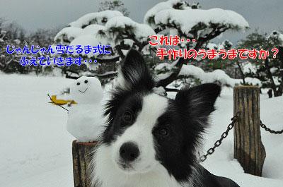 20111217-dar02.jpg