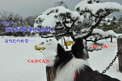 20111217-dar03.jpg