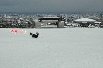20111217-yuk04.jpg