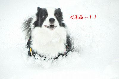 20111217-yuk10.jpg