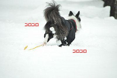 20111217-yuk12.jpg