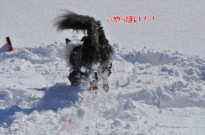 20111223-yuk06.jpg