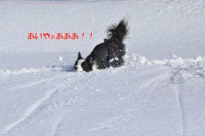 20111223-yuk07.jpg