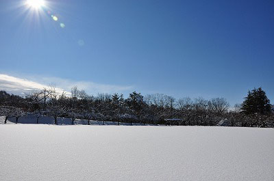 20111224-eve02.jpg