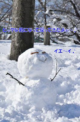 20111227-yuk01.jpg