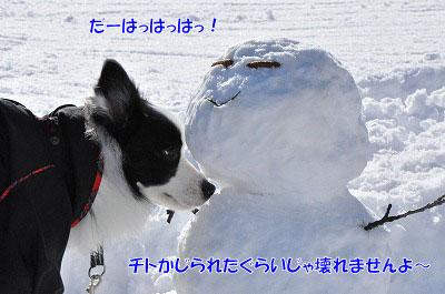 20111227-yuk02.jpg