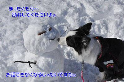 20111227-yuk05.jpg