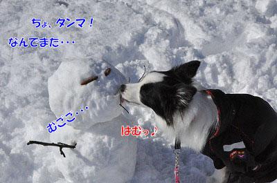20111227-yuk06.jpg